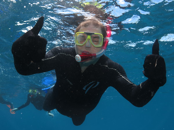 Snorkelling at the Reef - all OK!